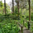 NGS Open Days