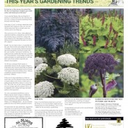 The Moorlander February 2019 -This Year's Gardening Trends