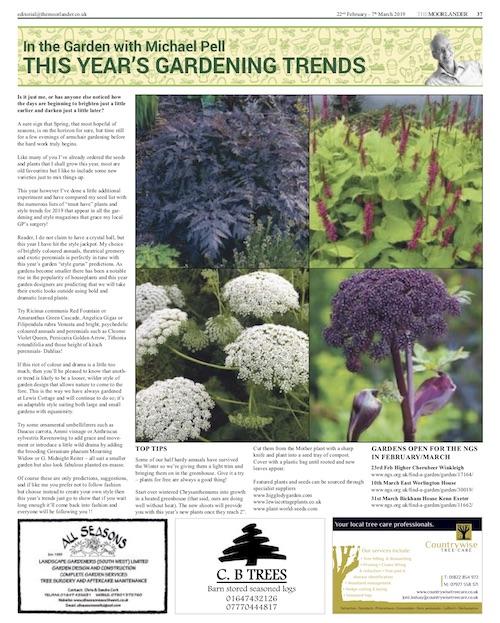 The Moorlander February 2019 -This Year's Gardening Trends