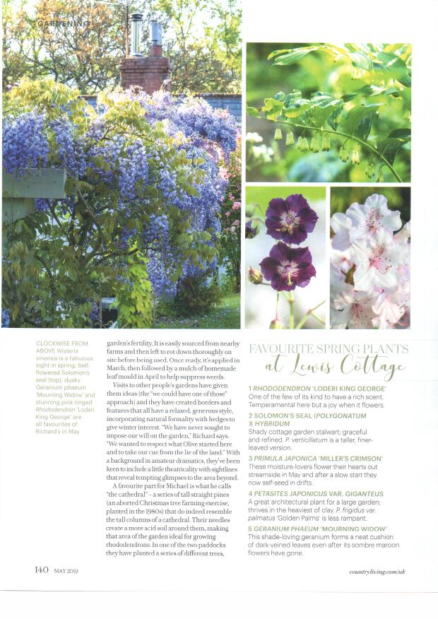 COUNTRY LIVING MAY 2019 5
