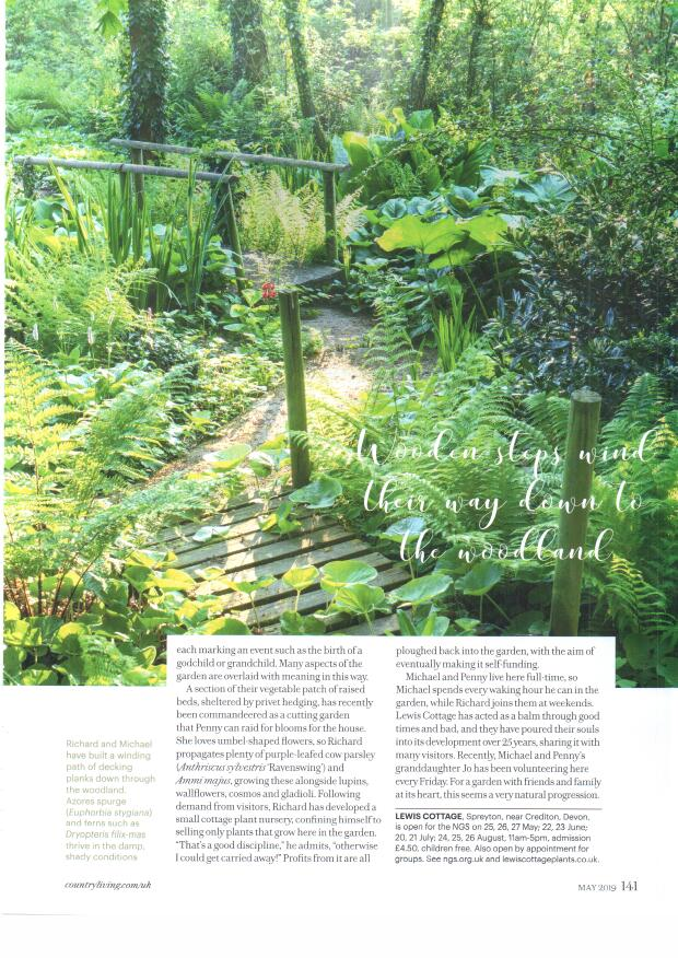 COUNTRY LIVING MAY 2019 6