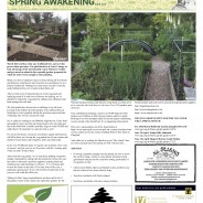 Spring Awakening – Moorlander March 2019