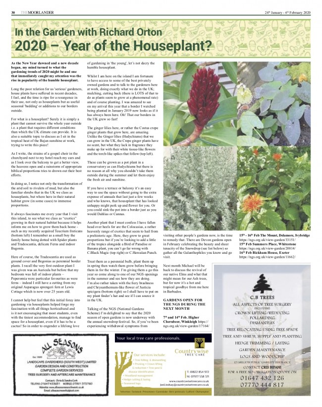 2020 Year of the Houseplant? - Moorlander January 2020