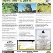 Hope for Elms 50 years on – Moorlander February 2020