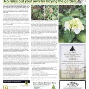 No rules but your own for tidying the garden – Moorlander Nov 2020