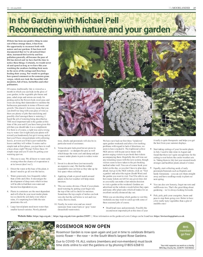 Reconnecting with nature & your garden