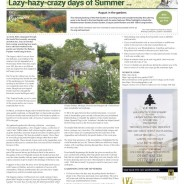 Lazy-hazy-crazy days of Summer… Moorlander September 2020