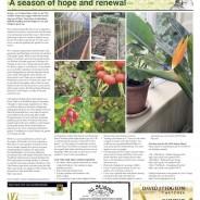 A season of hope & renewal – Moorlander February 2021